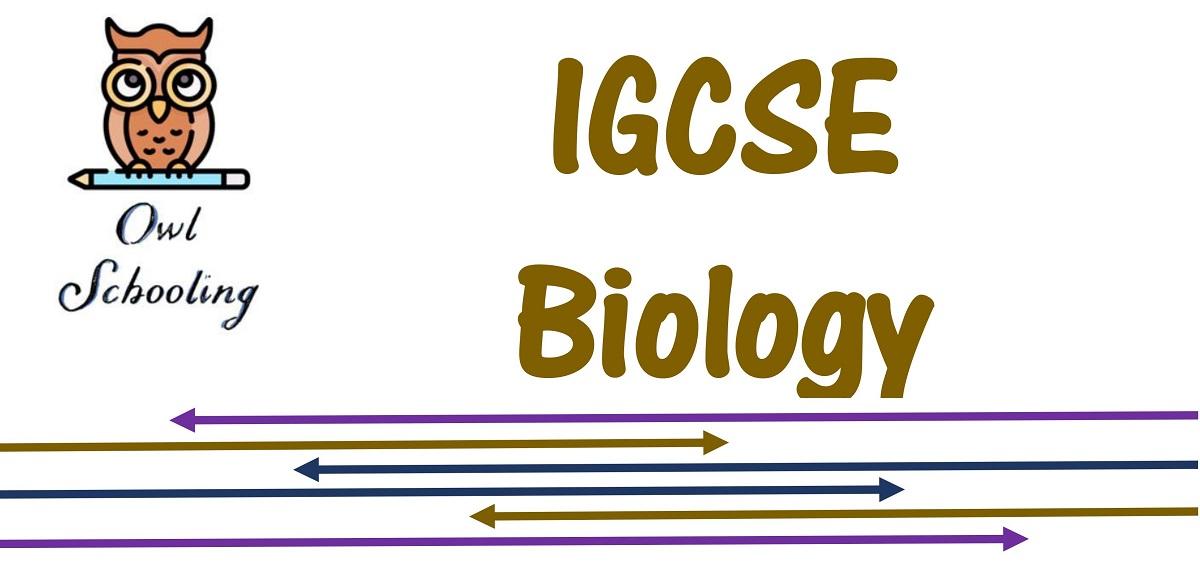 IGCSE – Biology