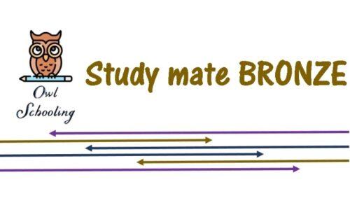 Study mate BRONZE